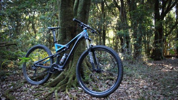 Stumpjumper comp carbon